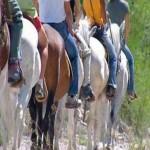 montar-a-caballo